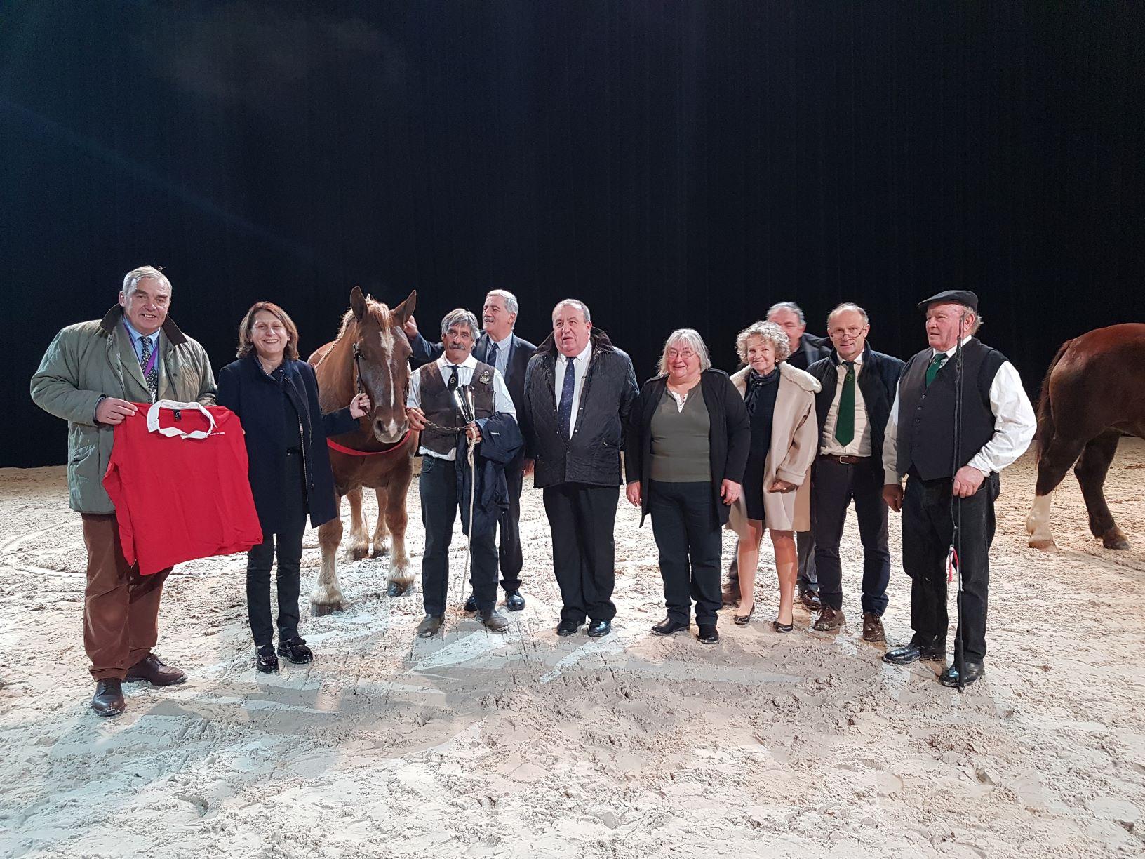 Salon du cheval d'Angers - Trophée des Pays de la Loire des chevaux de trait ligériens et stand filière