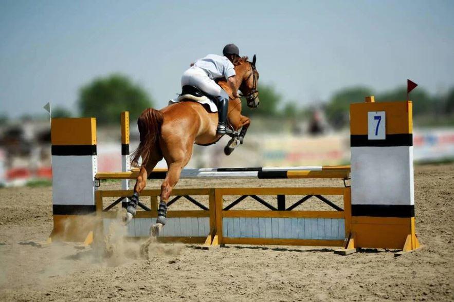 Équitation. Les Herbiers retrouvent le saut d'obstacles du 18 au 20 juin