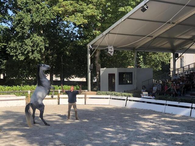 La Roche-sur-Yon. Au Haras, un spectacle d'été jusqu'au 31 août