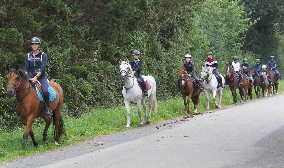 Bouaye. 150 cavaliers en randonnée sur les sentiers