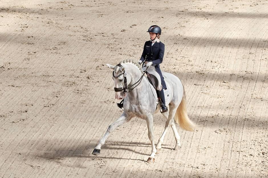 Équitation. Larissa Chapuis et Charlotte Chalvignac se mettent en évidence au Boulerie Jump
