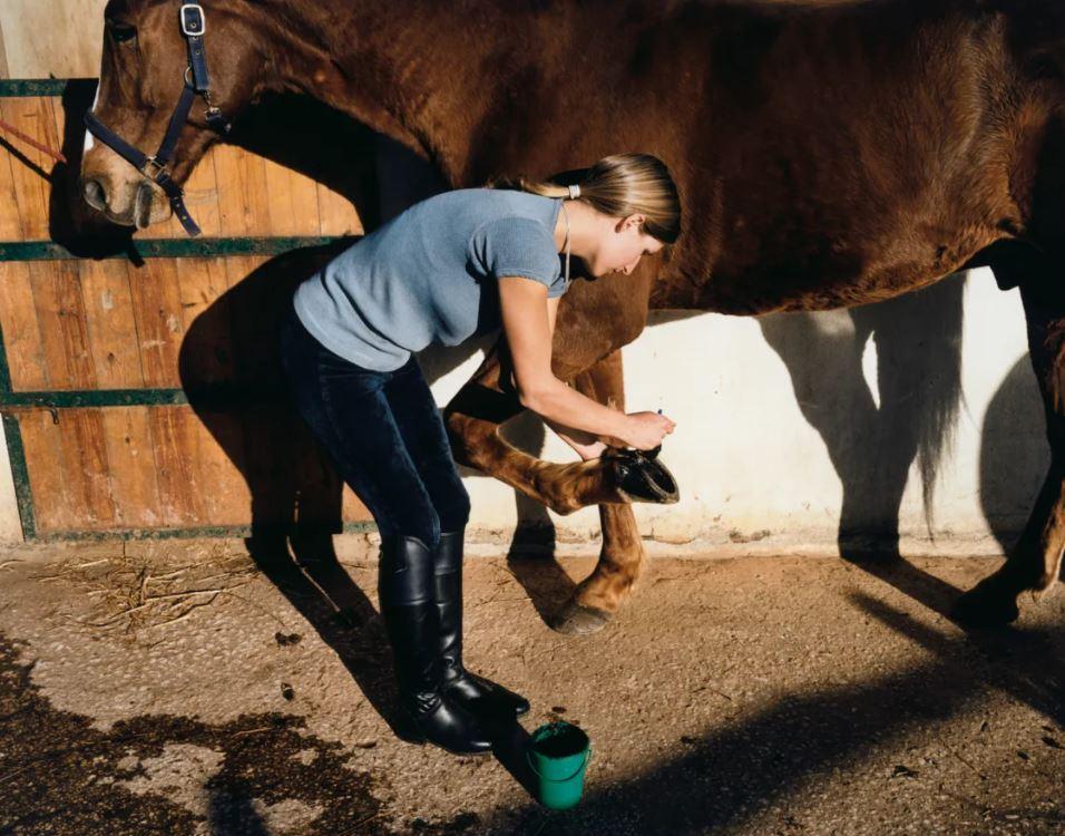 L'Equitation a besoin de bras mais n'en trouve pas !