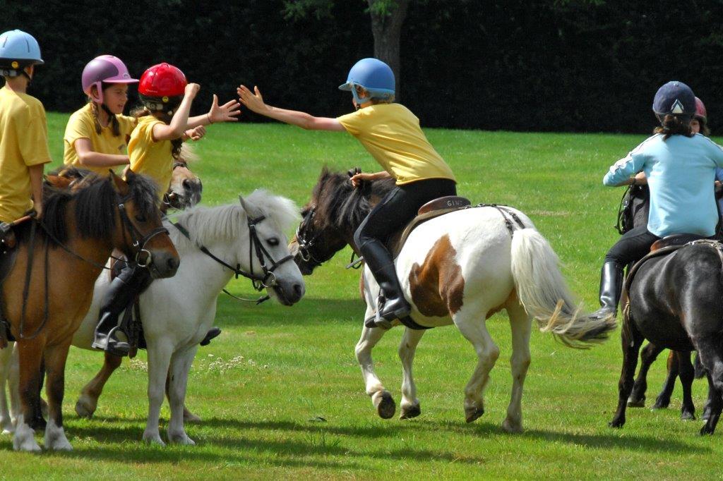 Stage régional de Pony Games à Corné