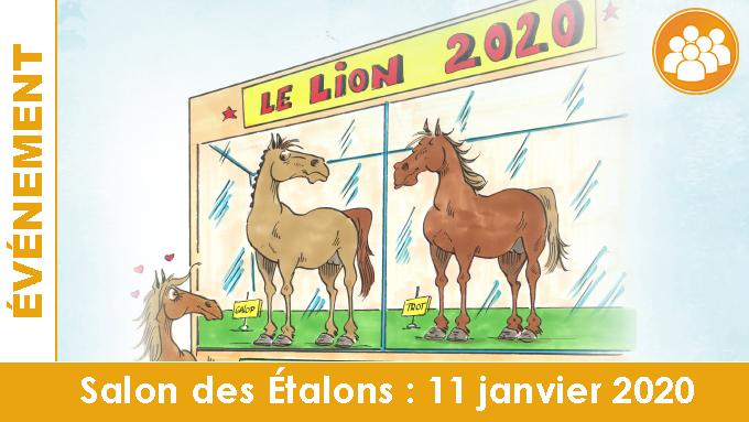 Salon des étalons de courses au Lion d'Angers