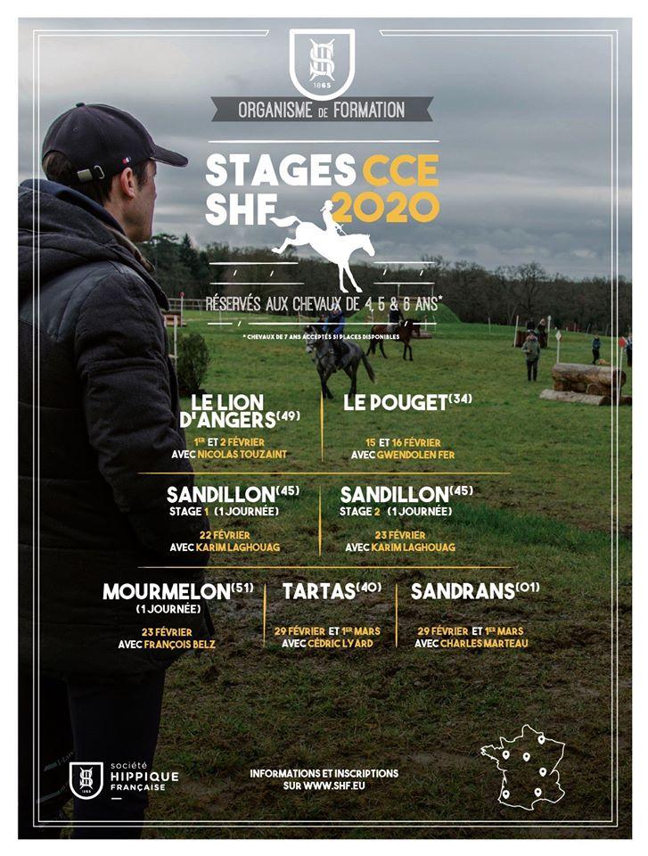 Stage CCE jeunes chevaux avec Nicolas Touzaint