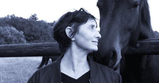 """Conférence """"Etude du vocabulaire équestre concernant l'éducation du jeune cheval à travers l'étude des textes des grands maitres (Bibliothèque Mondiale du Cheval)."""" à l'école Blondeau"""