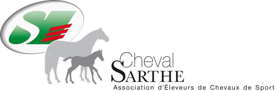 Concours foal à Courcemont