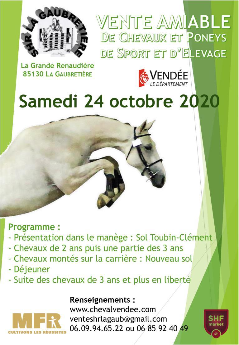 Vente de jeunes chevaux de sport à la Gaubretière