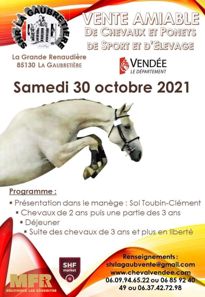 Vente de chevaux et poneys de sport et d'élevage - La Gaubretière