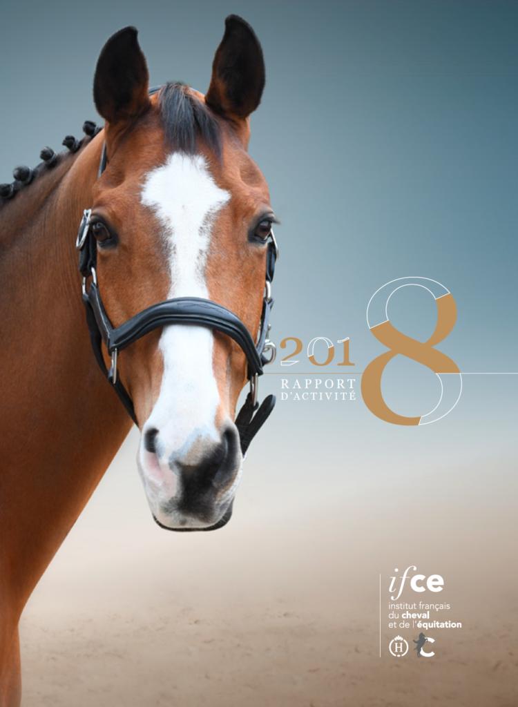 Consultez le rapport d'activité 2018 de l'IFCE !