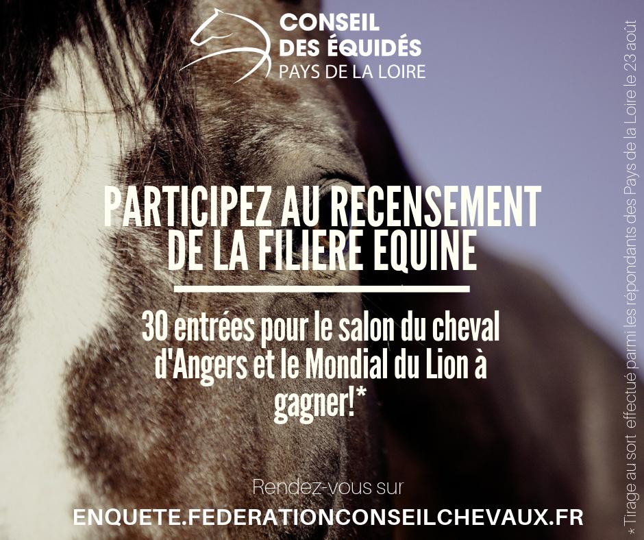 Remportez des places pour le Salon du Cheval d'Angers et le Mondial du Lion !