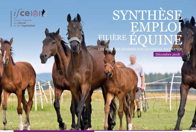 Une nouvelle estimation des emplois générés par le cheval en France